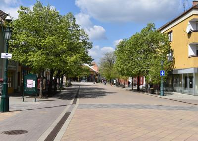 Gyulai utcakép